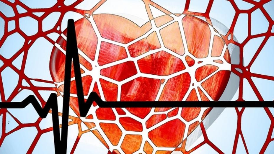 心腦血管康復見證