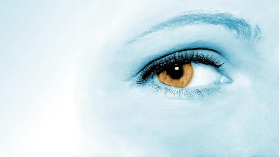 護眼保健食療