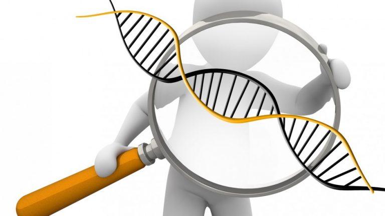 基因工程配對姻緣