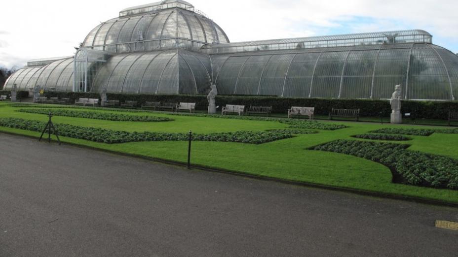 蘭迷朝聖之旅——英國皇家植物園