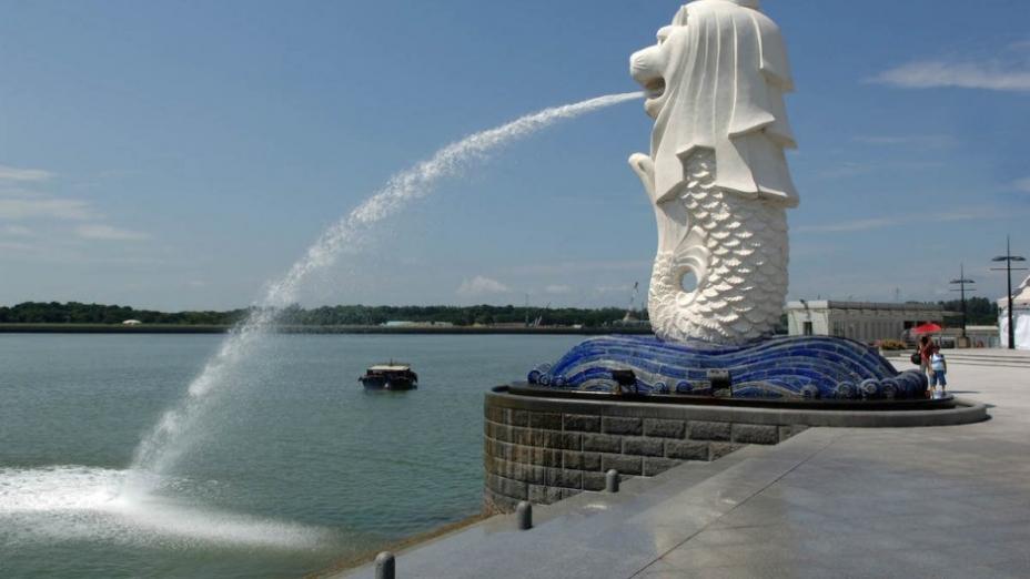 新加坡模式與50年不變
