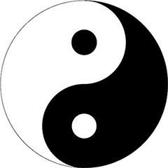 管加領,陰與陽,靜與動,自強不息與厚德載物都是要互相配合,雙得益彰。(網上圖片)