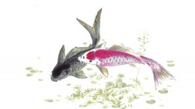 一個魚頭人身的人,對薜偉說:「河神知道你不愛居陸上,喜歡居住在水中,享受清波綠水的樂趣,現在暫時把你化成赤鯉,在東潭居住。」薜偉聽了這番話之後,還來不及思索,一看自己,早已變成一條鯉魚了。(網上圖片)
