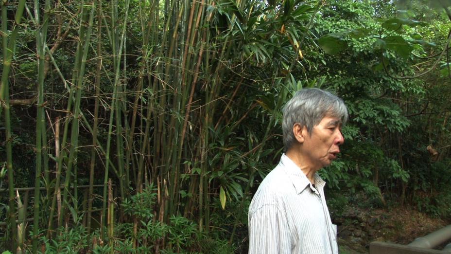 古蒼梧先生在竹林中。(陳榮照先生提供)