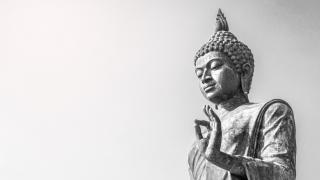 佛陀悟了什麼?