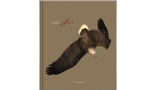 史維觀鳥探尋飛行密碼 生態攝影內藏玄機