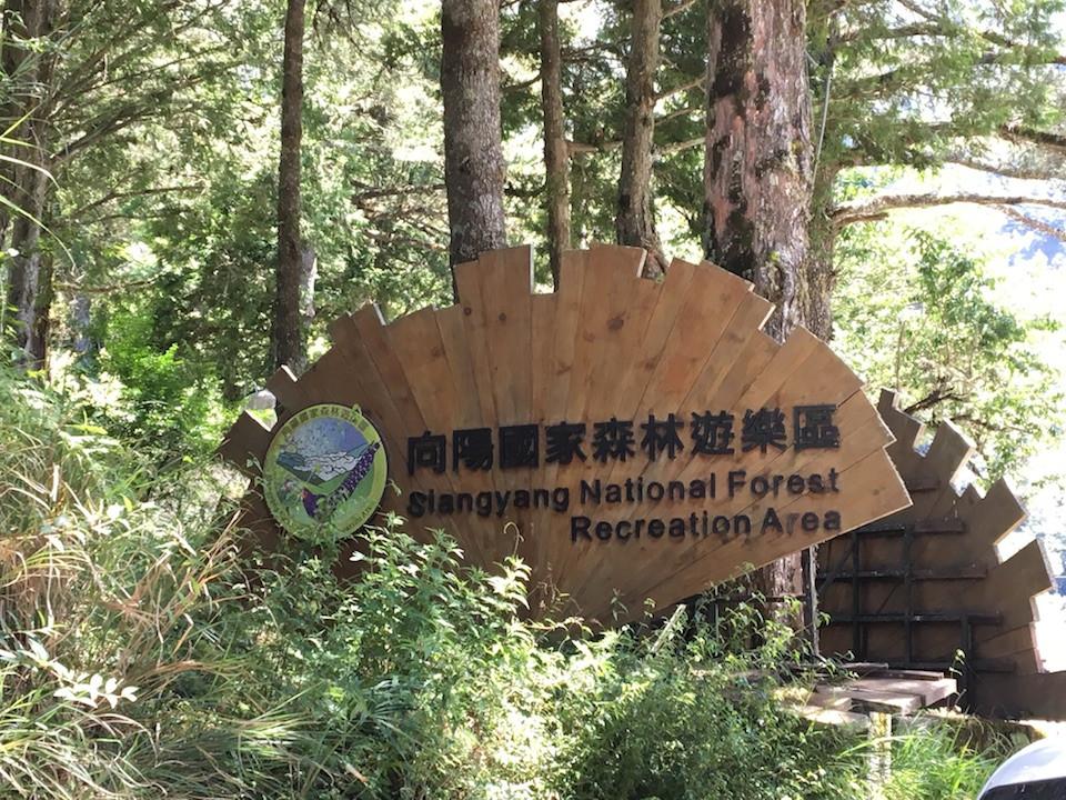 圖五:向陽森林遊樂區(海拔2,350米)。