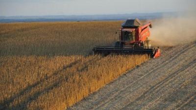 美國農民並不缺錢,而是擔心失了具永續性的訂單。(Pixabay)