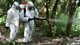 中國歷史防蚊大法