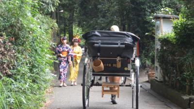 竹海之中,現出一條兩米多寬的行人通道,兩旁用籬笆分隔,這裏是京都最吸like的拍照勝地。