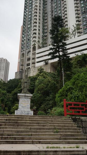 校園裏孔子像旁的南洋杉是李金鐘校長送的。
