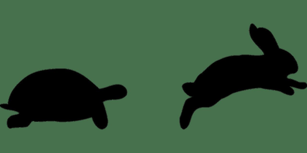 孩子們聽着瞪大了眼睛,發現只有兔子偷懶,烏龜不偷懶的時候,烏龜才可能跑得快。 (Pixabay)