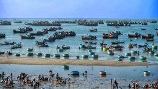 越南梅奈漁村 Mui Ne Fishing Village in Vietnam