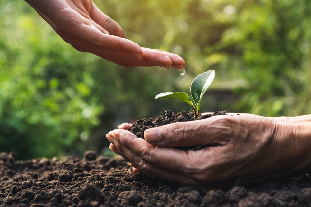 落實環保是一種責任與榮耀,也是為後代子孫,保留美麗大地的最好方式。(Shutterstock)