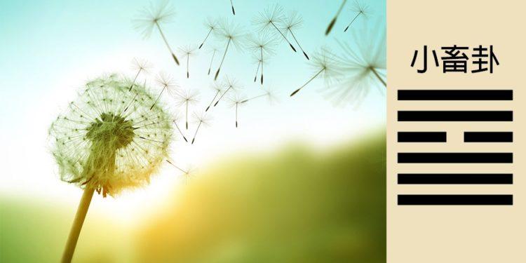 「風行天上,小畜」──需要積蓄的陽氣被外風吹散,因此無法積蓄得深厚。(Shutterstock)