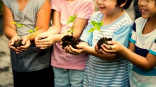教育現場觀察:幼稚園教育的變化與前瞻