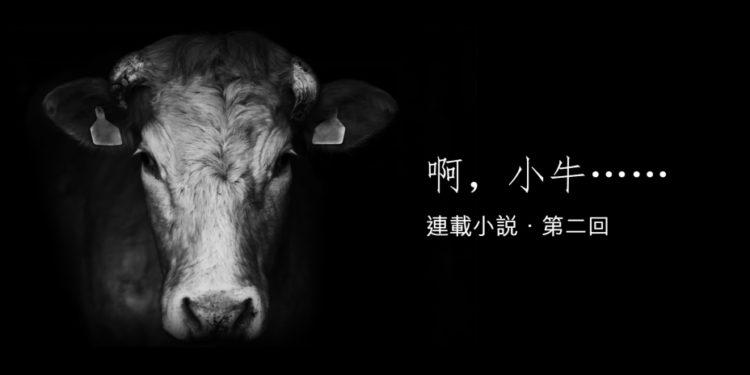 美的名字小牛也喜歡,我一叫「小雪花」牠就樂得又是蹦又是跳呢!(灼見名家製圖)