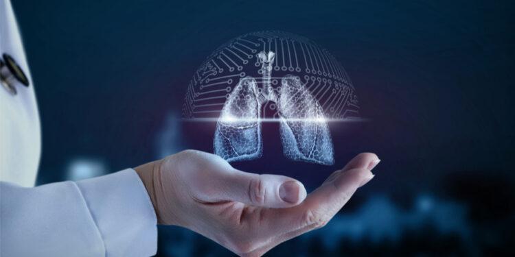 譬如人被安裝了四個肺、卻只有一個心臟,就算吸入肺部的氧氣多了,心臟也沒有足夠的力量泵血進入四個肺,也未必有充裕血液進行氣體交換。(Shutterstock)