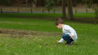 在幼稚園推動環境教育的經驗與展望
