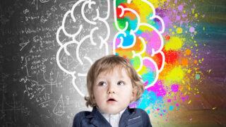 人類無限潛能深埋在大腦90%空間?新教養時代別迷信腦力開發