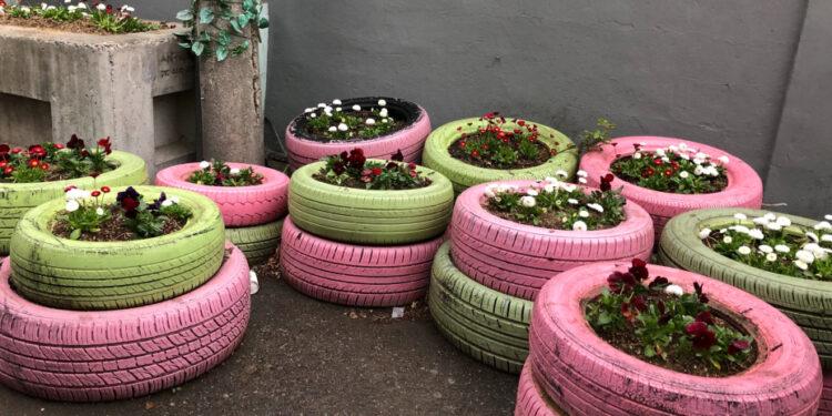 任何物料只要花點心思,就能以另一種形態繼續再用,舊車胎髹上顏料,便能變成社區園圃。(作者提供圖片)